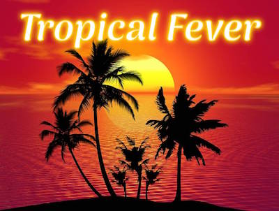 29. Juni TOPICAL FEVER Freibad-Fete